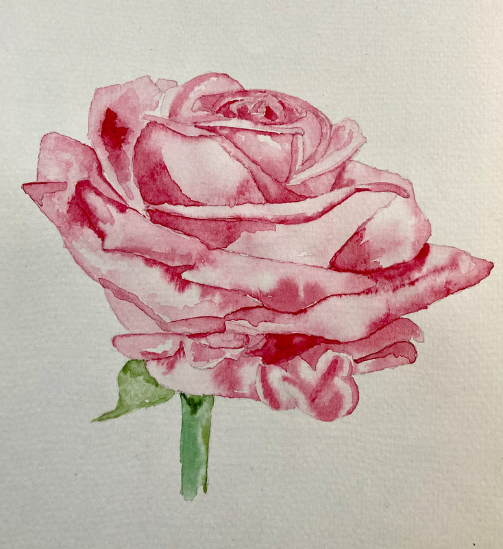 Watercolour Red Rose